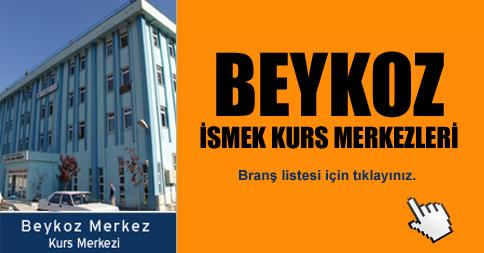 İstanbul Beykoz
